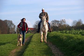 Spaziergang mit Hund und Pferd 3