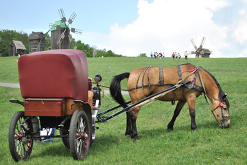 horse-drawn vehicle