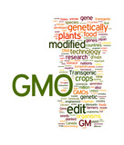 GMO Transgenic Food with copy space poster