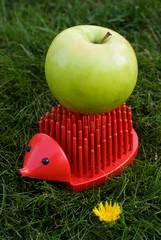 red plastic penholder hedgehog bears a natural apple