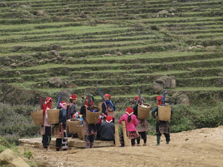 Hmong en Sapa (Vietnam)