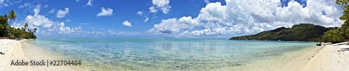Fototapeten,moorea,ozeanien,taich,ochsen