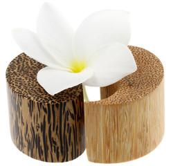 fleur de frangipanier sur salière poivrière yin yang, fond blanc