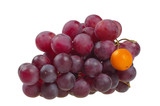 Red grapes symbolizing the difference