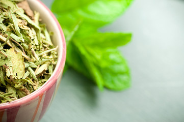 stevia sucre - stevia rebaudiana plante feuilles séchées