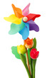 Girandola e tulipani