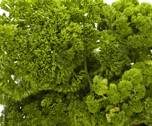 salad parsley food vegetable vegetarian cooking