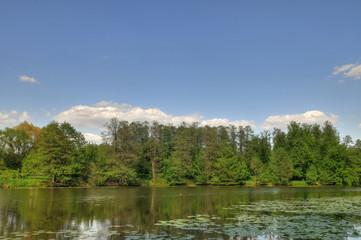 Beautiful landscape in park