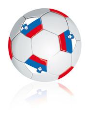 Slovenia soccer ball