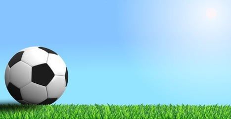 Soccer and grass
