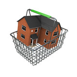 3d House buyers basket poster