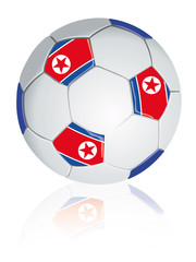 North Korea soccer ball.