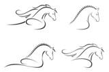 Fototapety Horse head