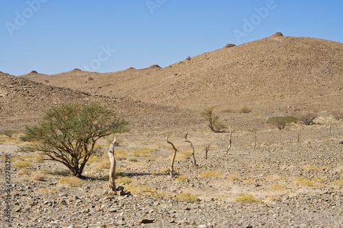 Bienenkorbgrab, Beehive Tomb, Bat, Oman