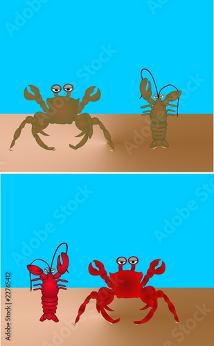 King crab  and lobster on a beach illustration