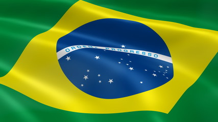 Brazilian flag in the wind