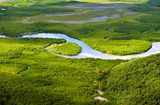 Aerial view of lush coastal wetlands poster
