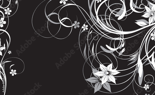 black and white floral abstraction