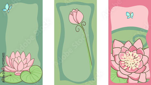 set of water lily cards