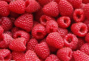 Sweet raspberry