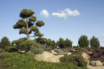 Findlingspark