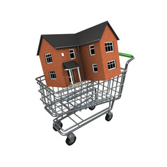 3d House in a trolley