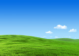 7000px nature collection - Green meadow template