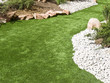Lawn - 22840404
