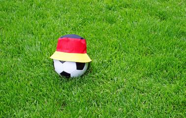 Fußball Fan Konzept - Soccer Fan Concept