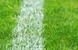 Soccer Grass - Fußball Rasen