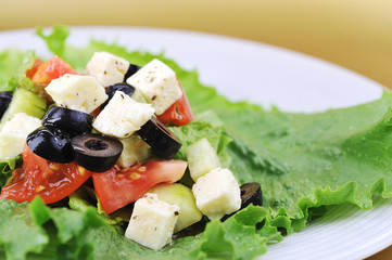 salat with cheese and fresh vegetables  close up