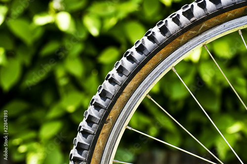 Mountain bike tyre
