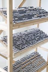 Vials in wooden stand