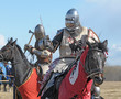 The horse knight in an armour and in a helmet