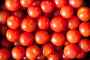 Baby tomatoes 2