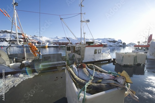 Fishing boat in harbour, Norway