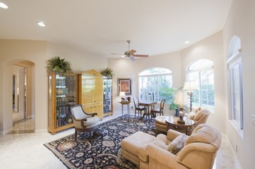 Living room with cabinet and patterned rug