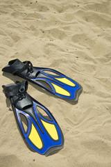 Fins in beach sand