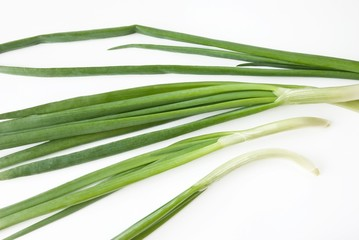 green onions over white background