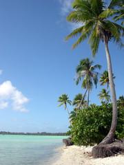 Polinesia - Bora Bora