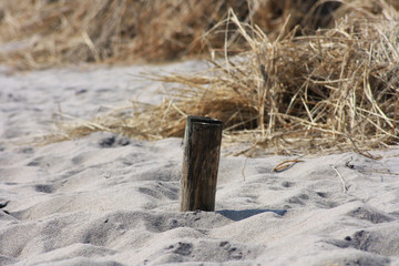 pile in sand ©