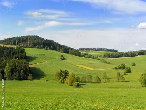 Fotobehang Heuvel Mühlviertler Landschaft