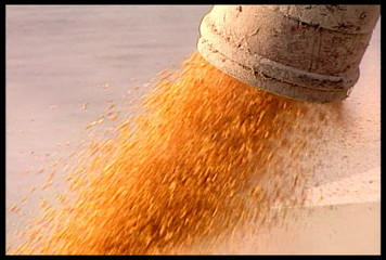 Unloading Corn on a Ship