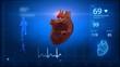Human heart concept in loop