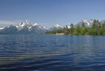 Mount Moran and Jackson lake