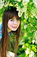 in acacia blossom