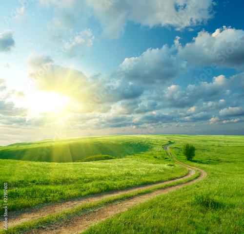 Fototapeten,landschaft,gras,straßen,sonnig