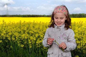 Mädchen im Rapsfeld mit Pusteblume