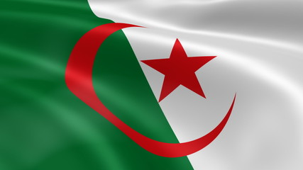Algeria flag in the wind. Part of a series.