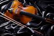 Geige, Violine, quer 03
